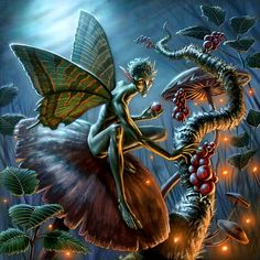Fairy food2