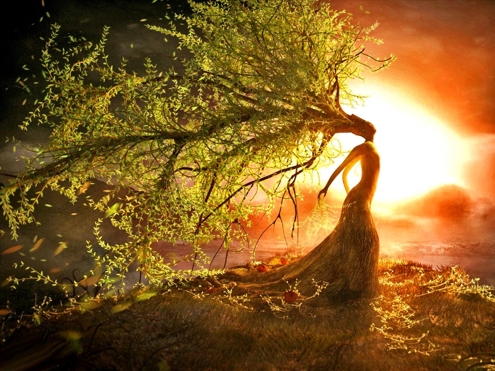 Goddess tree3amandaleighfFemale energy4Spiritual abuse